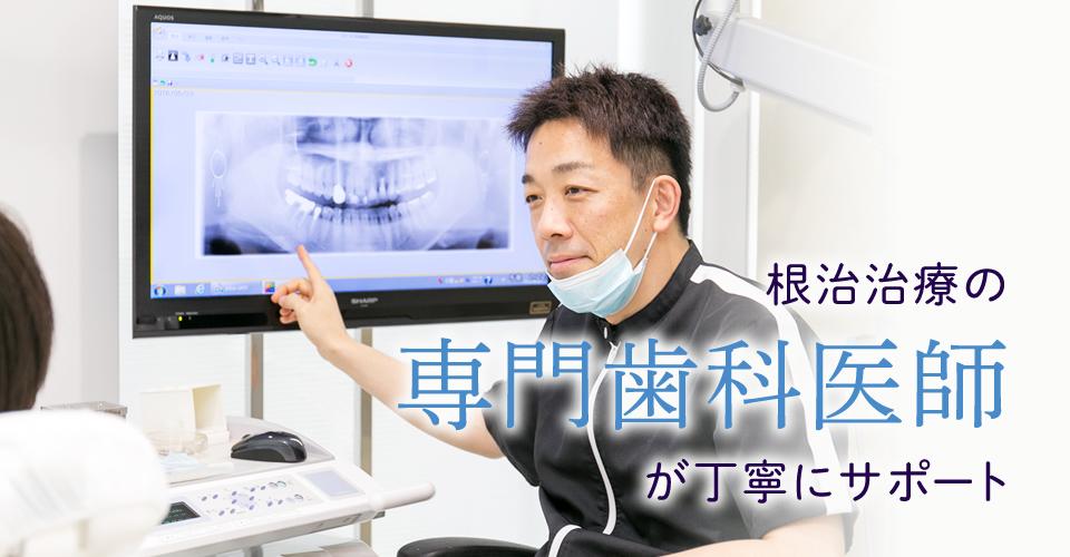 根治治療の専門歯科医師が丁寧にサポート